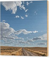 Road Near Ten Sleep Wyoming Wood Print