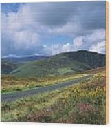 Road Through A Mountain Range, County Wood Print