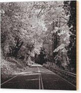 Road Through Autumn - Black And White Wood Print