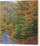Road Through Autumn Woods Wood Print by Larry Landolfi and Photo Researchers
