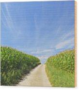 Road Through Cornfield Wood Print