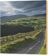 Road Through Glenelly Valley, County Wood Print