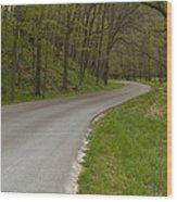 Road Thru Woods Spring 1 Wood Print