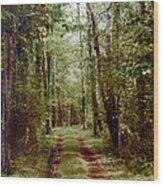 Road To Anywhere Wood Print