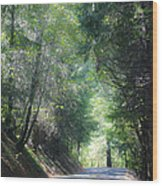 Road To Apple Hill Wood Print