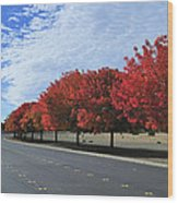 Road To Fall Colors Wood Print