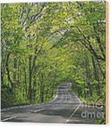 Road To Gatlinburg Tn Wood Print by Elizabeth Coats