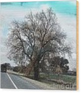 Road To Hico Tx Wood Print