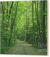 Road To Jasper Woods Wood Print