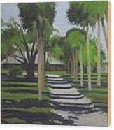 Road To The Lodge Wood Print
