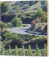 Road Winding Through Vineyard And Olive Trees Wood Print