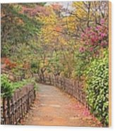 Road With Fence Wood Print by ~~**Yuri's Photography**~~