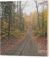 Roads Less Traveled Wood Print