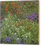 Roadside Flowers, Cascade Mountains, Usa Wood Print