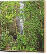 Roadside Waterfall Wood Print