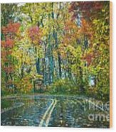 Roadway After The Rain  Wood Print