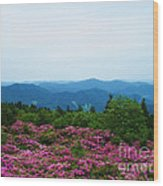 Roan Mountain Wood Print