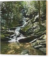 Roaring Creek Falls - II Wood Print by Joel Deutsch
