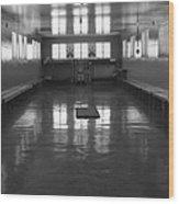 Robben Prison 01 Wood Print