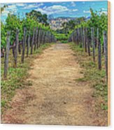 Robert Mondovi Vineyard Path Wood Print