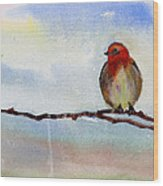 Robin 1 Wood Print by Anil Nene