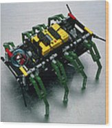 Robot Spider Constructed From Lego Wood Print