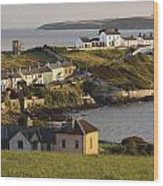 Roches Point Lighthouse In Cork Harbour Wood Print