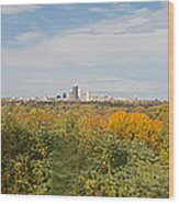 Rochester Skyline Panorama Wood Print