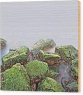 Rock Bottom Wood Print