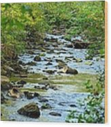 Rock Creek Bed Wood Print
