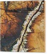 Rock Detail, Killarney Provincial Park Wood Print