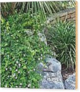 Rock Garden Beauty Wood Print