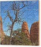 Rock Garden Skeleton Arches National Park Wood Print