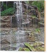 Rock Glen Falls 9 Wood Print