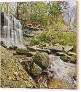 Rock Glen Falls Wood Print by Cale Best