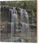Rock Glen Falls Wood Print