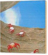 Rock Lobster Wood Print