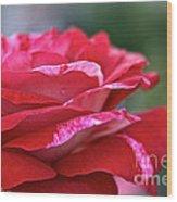 Rock N Roll Rose Wood Print