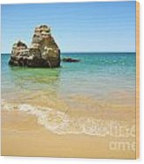 Rock On Beach Wood Print by Carlos Caetano