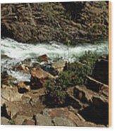 Rock Rush Glen Alpine Creek Wood Print