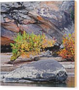 Rock Shrub And Bluff At Cumberland Falls State Park Wood Print