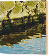 Rocks And Reflections On Ocean Wood Print