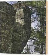 Rocks And Trees Wood Print