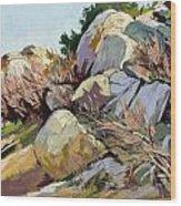 Rocks And Weeds Wood Print