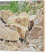 Rocks Bonham State Park Tx Wood Print