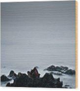 Rocks In Water At Sea Wood Print