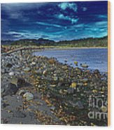 Rocky Beach In Western Canada Wood Print