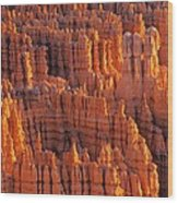 Rocky Canyon Wood Print