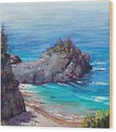 Rocky Coast Big Sur  Wood Print