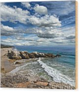 Rocky Coast In Malibu California Wood Print